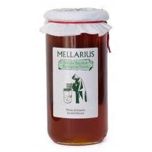 Miel de Eucalipto 970 gr
